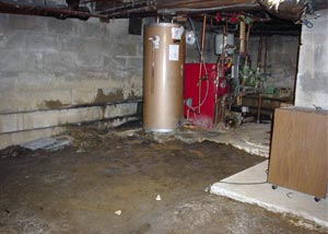 A damp basement with an inconsistent concrete floor
