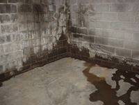 flooded basement with leaky basement walls in Shoal Lake