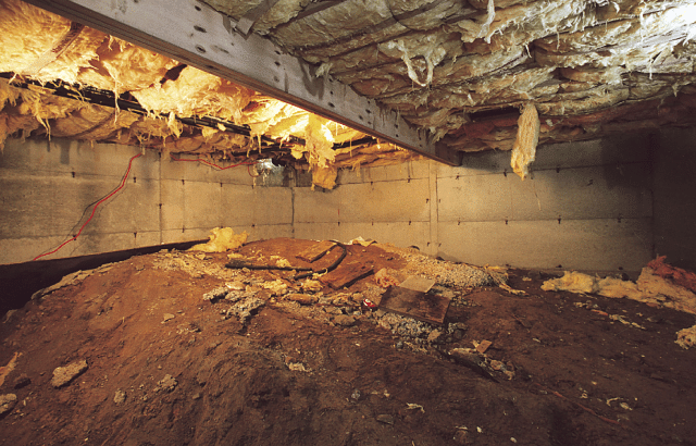 Crawl Space Encapsulation Stops Musty Smell in Wichita Home