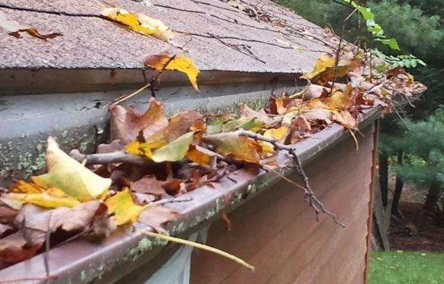 Fall Ready Clean up: Top 5 Things to Do Around Your Home