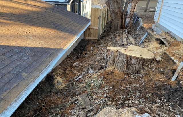 Large Tree and Clogged Gutters Cause Bowing and Leaning Walls in Omaha