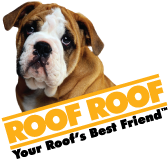 RoofRoof