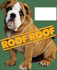 Roof Roof Dog