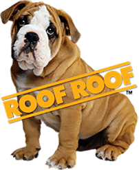 Roof Roof Dog
