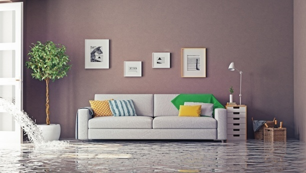 How To Prevent Costly Leaks From Damaging Your CT Home