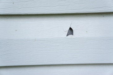 Common Problems That Can Affect Your Home's Vinyl Siding