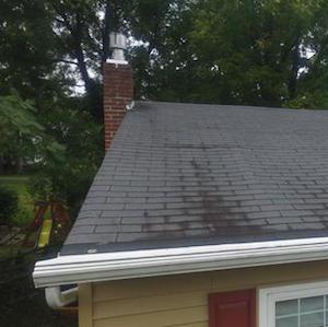 Stained roof shingles