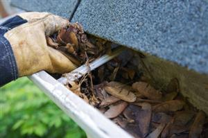 Gutter Guards Can Save You Time and Money