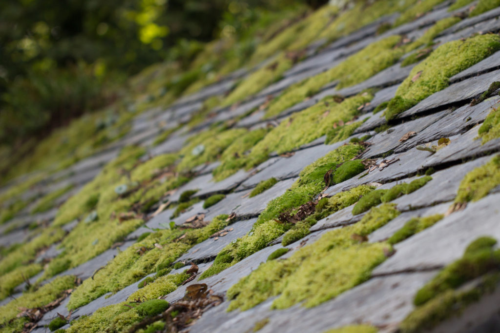 3 Factors to Help Determine if Your Roof Requires an Upgrade