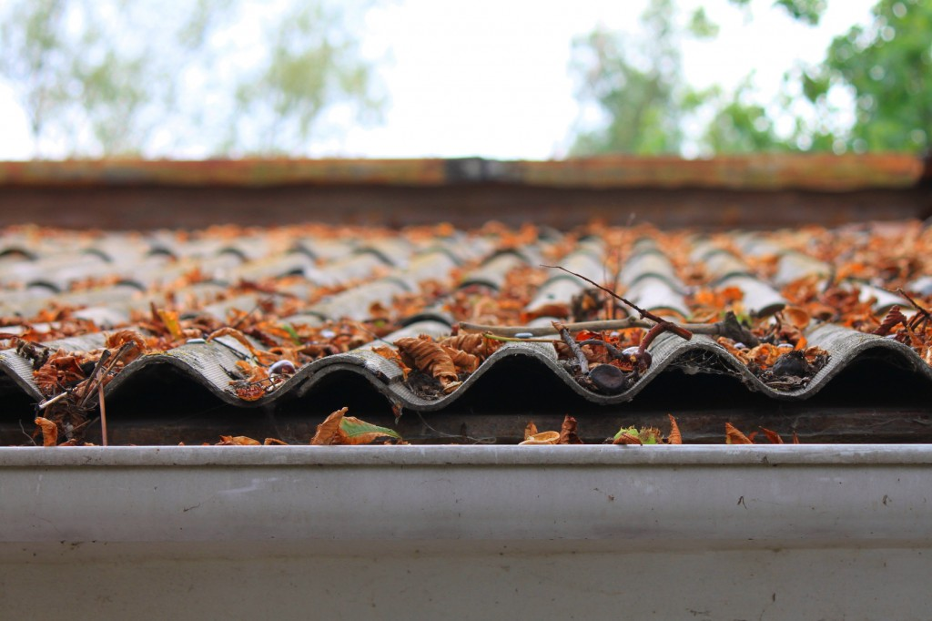 4 Questions You Need to Ask Before Replacing Your Gutters