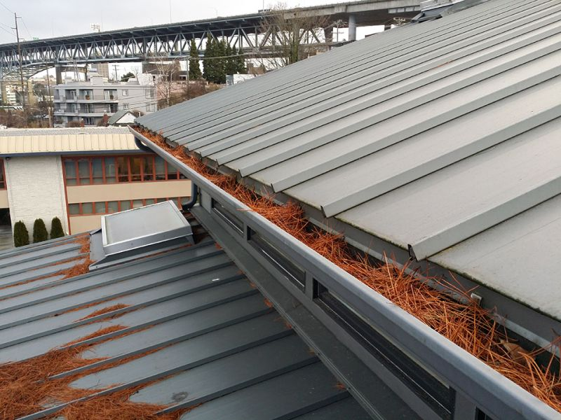How Do Leafless Gutters Protect Your Home?