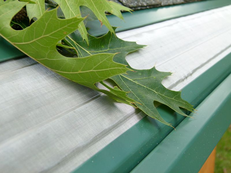 Keep Your Gutters Free of Debris and Leaves