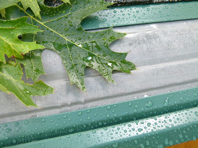 Use a Gutter Guard for Easy Leafless Gutters