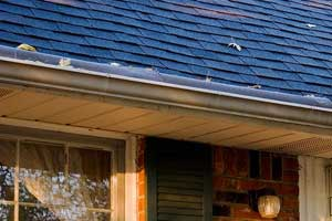 Gutters on Portland home