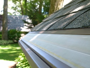 MasterShield Gutter Guards