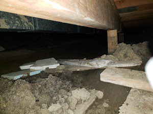 sagging crawl space with wooden shimming a Carlton crawl space
