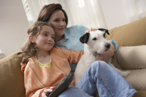 Humidifiers Can Improve Indoor Air Quality in Your Home