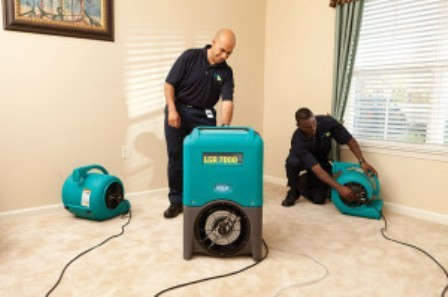 Water Removal and Drying Out Services in Newtown, CT