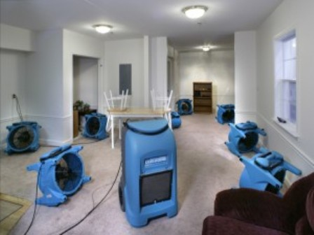 Water Damage Cleanup in Watertown, CT