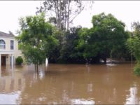 Summer & Hurricane Rainstorms: Is Your Montgomery County Yard Protected?