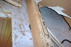 damaged wood from termites in Bridgeton, Carteret, Elizabeth, Lakewood, Millville, Newark, Paterson, Rahway, Toms River, Vineland, Willingboro,