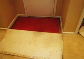 terrafirmafs-carpet_looklithis3