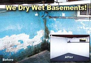 Harmful Effects Of A Wet Basement
