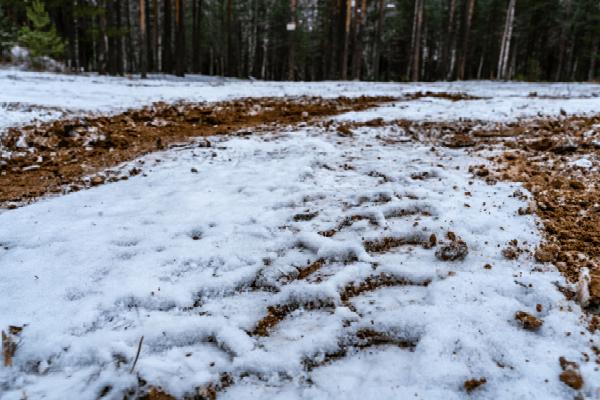 Frozen dirt and grass.