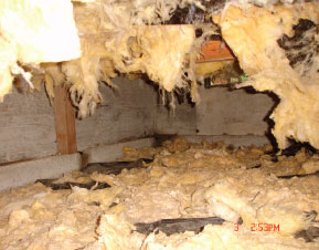 Insulation falling off due to moisture problem