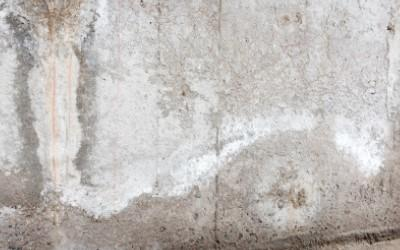 White efflorescence stain on basement wall