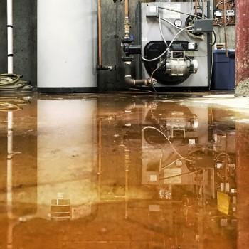 Water In The Basement What To Do Causes Prevention