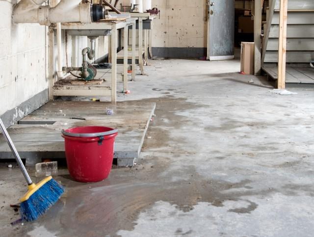 What to Do When a Home Inspection Reveals a Wet Basement