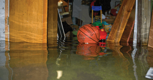 [Flooded basement]