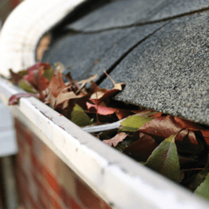 [What Type of Gutters Do I Need?]