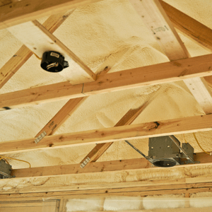 [Is Insulation a necessity?]