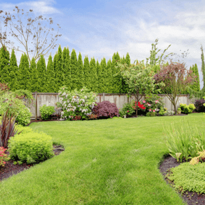 [What is landscaping]