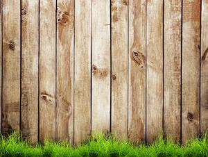 Should You Paint Your Wooden Fence?