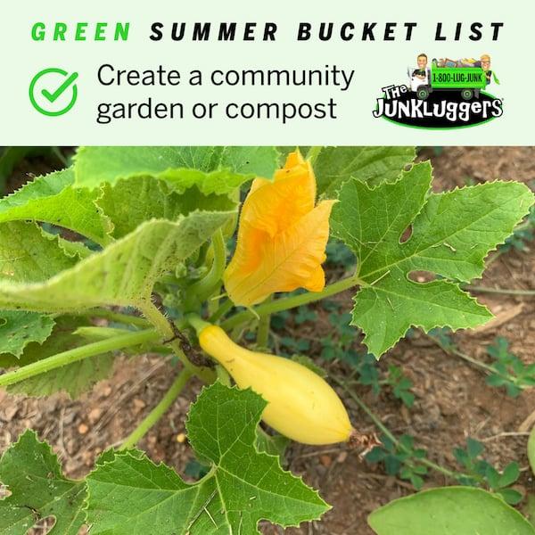Green summer bucket list