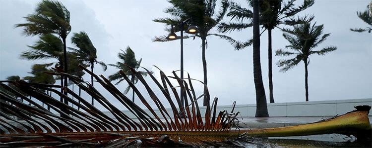 Junkluggers Hurricane Irma & Hurricane Harvey Relief