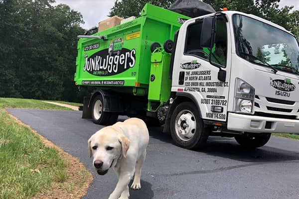 Junk lugger truck and dog