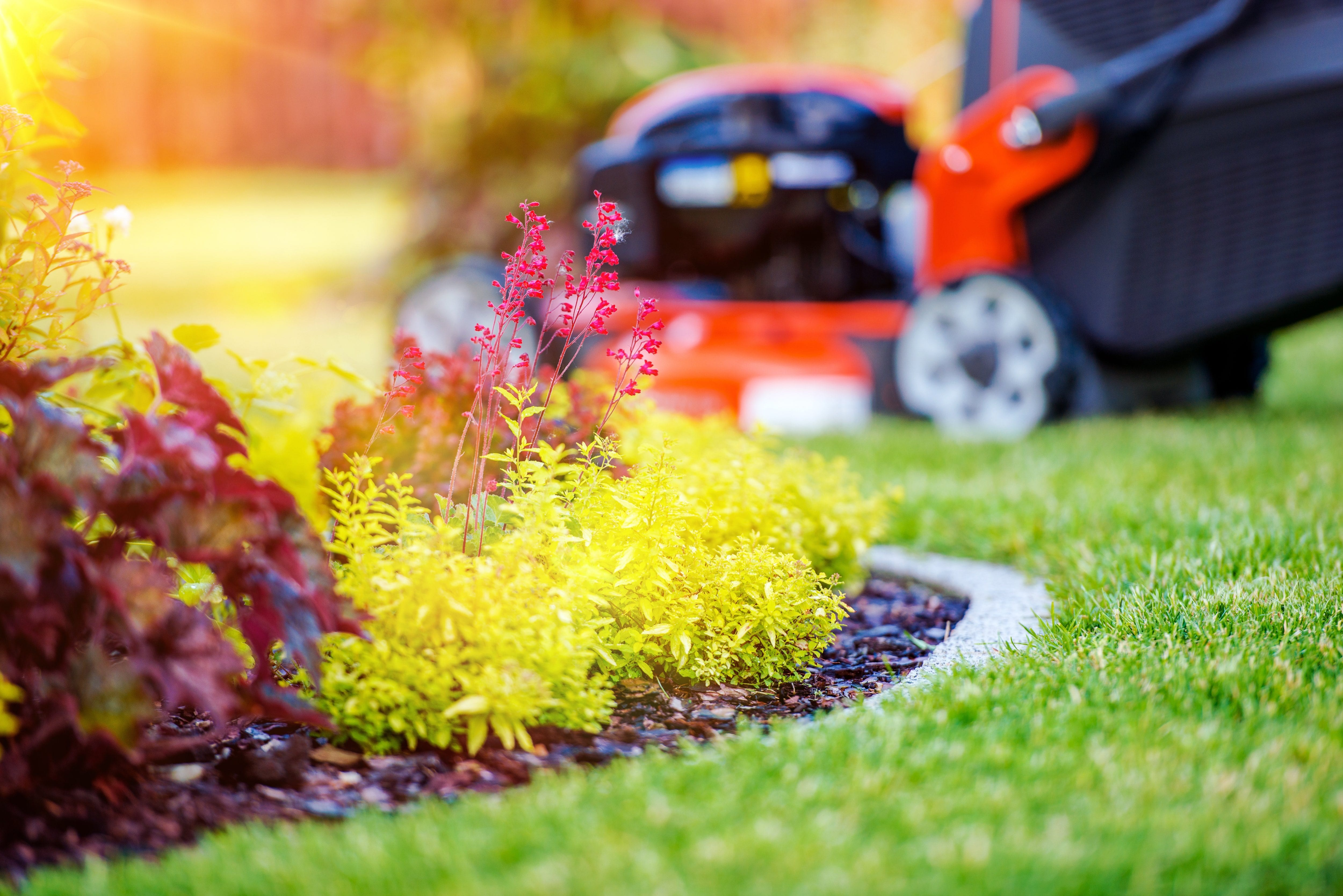 5 Spring Lawn Care Tips to Help Your Yard Stay Beautiful