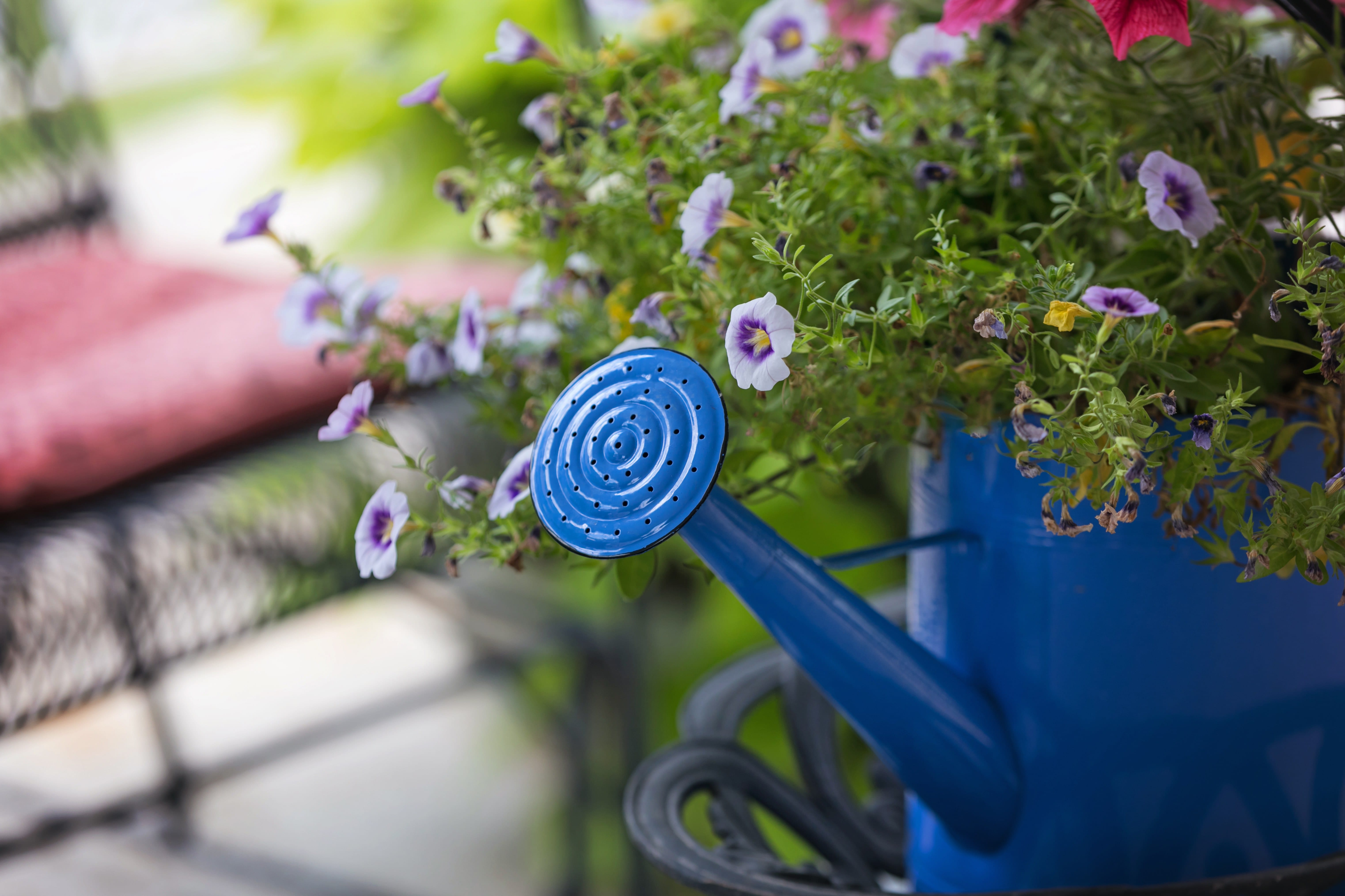 5 Ways to Get Your Porch Ready for Spring