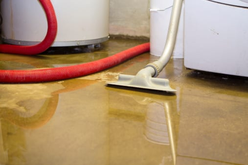 Wet Basement? We Can Fix That. - Image 1