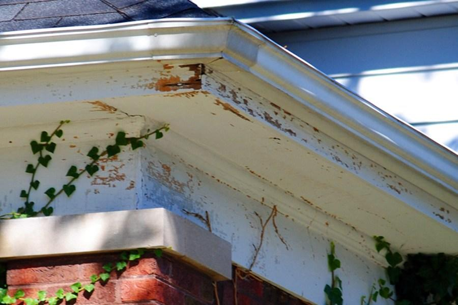paint-coming-off-fascia-board-9-signs-that-gutter-is-overflowing-by-raindrop-gutter-guard-blog