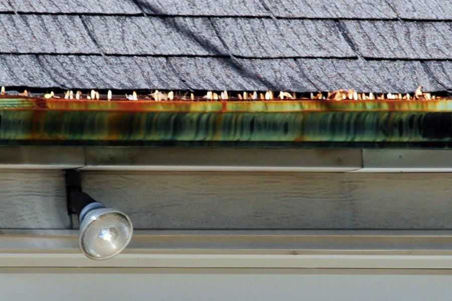 tiger-striping-on-copper-gutter-9-signs-that-gutter-is-overflowing-by-raindrop-gutter-guard-blog