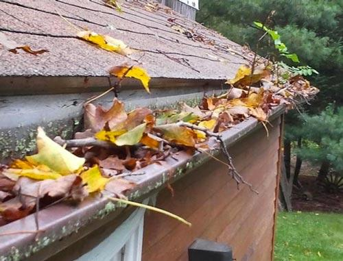 Clogged Gutters Full of Leaves and Debris