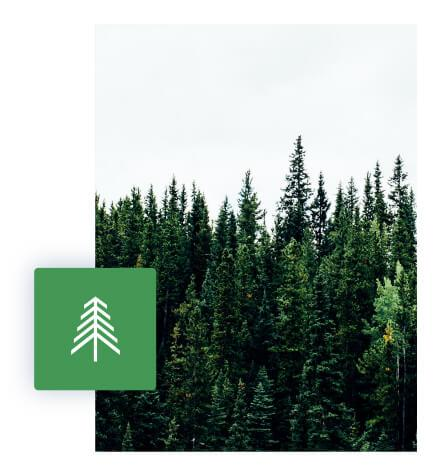 Supportworks is Certified Evergreen by the Tugboat Institute