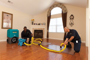 Cleaning Services by ServiceMaster of Greater Bridgeport