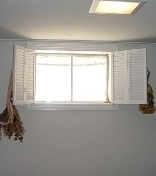 An installed basement window, streaming light into a home.