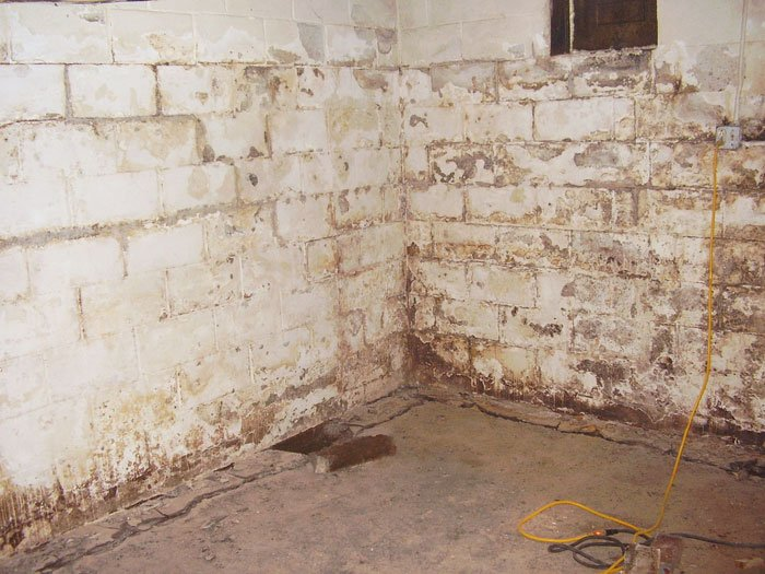 Waterproof Paints Wall Coatings, How To Seal A Damp Basement Wall